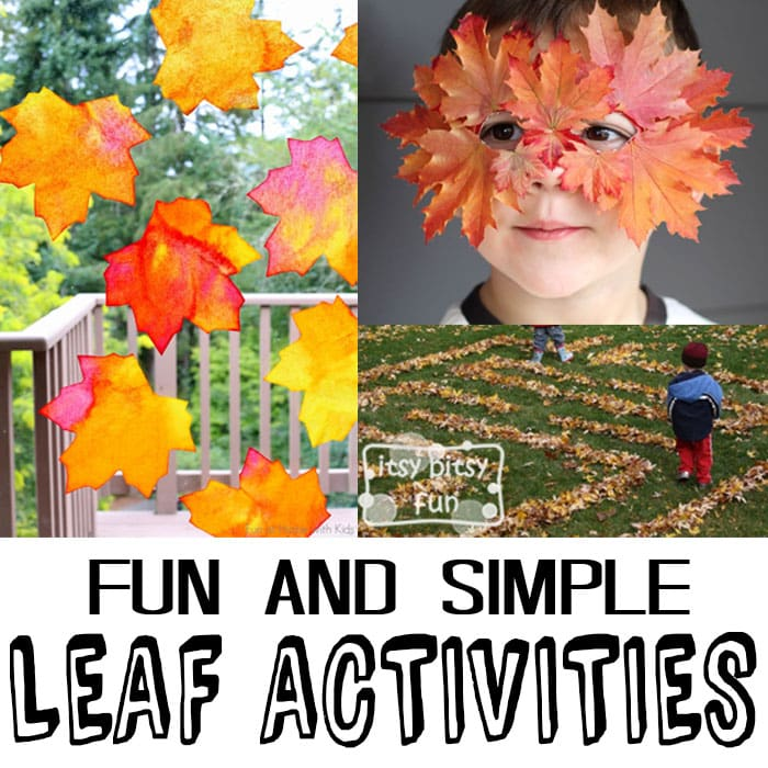 10 Simple Leaf Activities