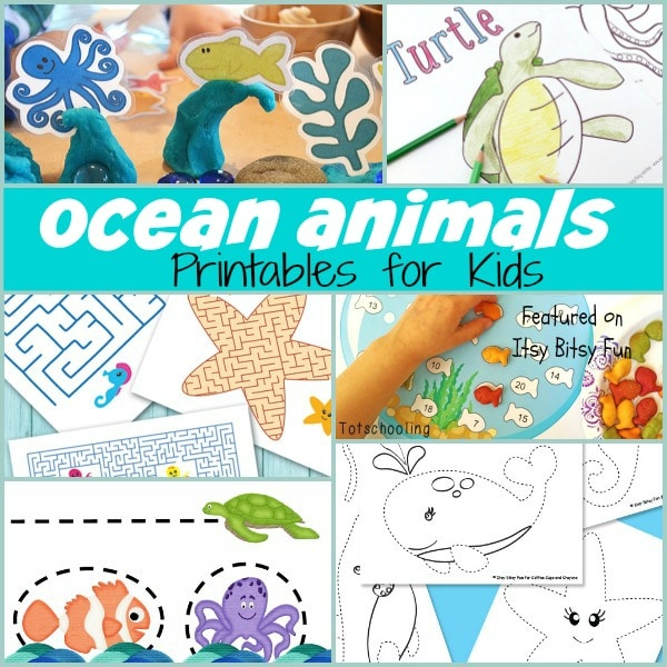 Sweet Ocean Animal Printables