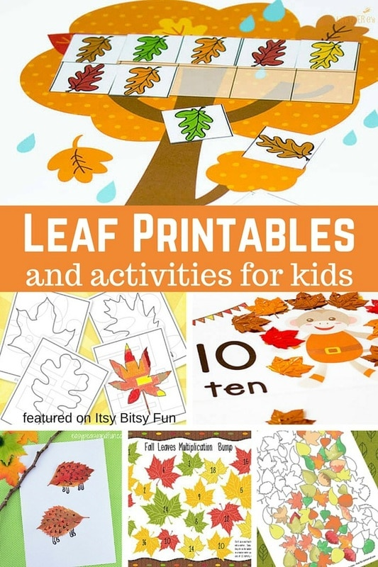 Leaf Printables and Activities - Itsy Bitsy Fun
