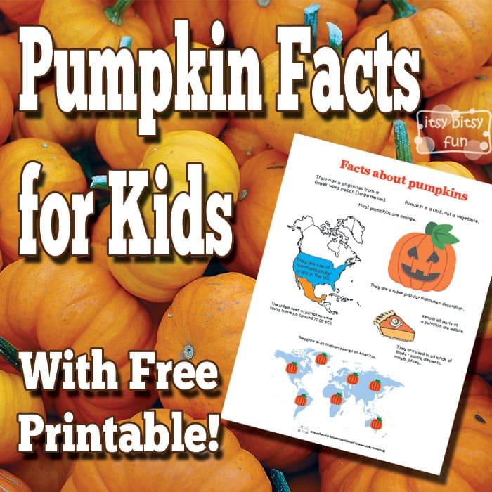 Fun Pumpkin Facts for Kids