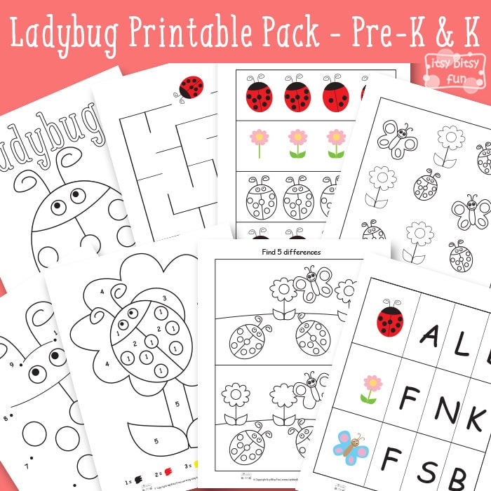 Ladybug Printable Worksheets for Kindergarten and Preschool