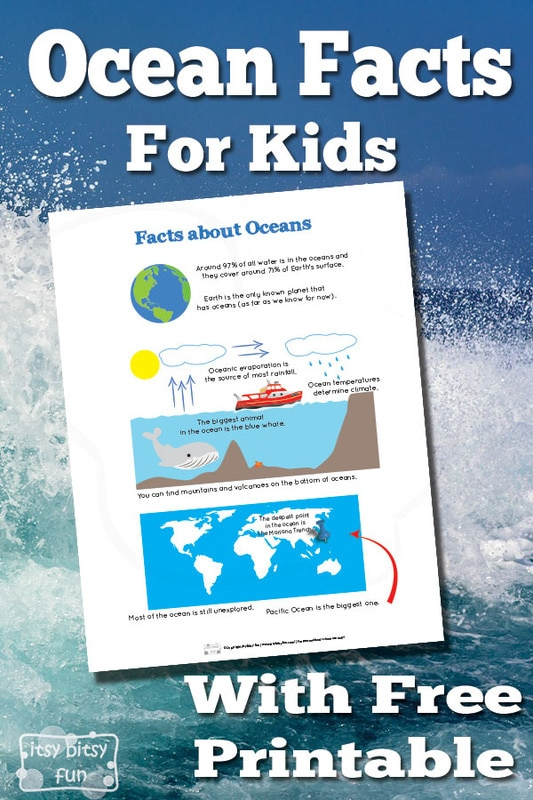 Fun Ocean Facts for Kids