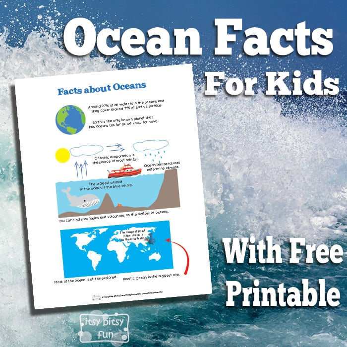 Printable Fun Ocean Facts for Kids