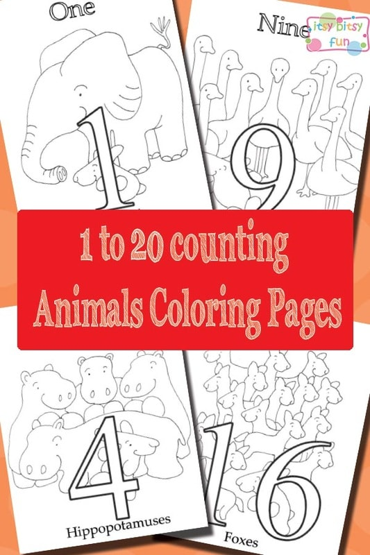 Little Bunny: 1 to 20 African Animals Coloring Pages