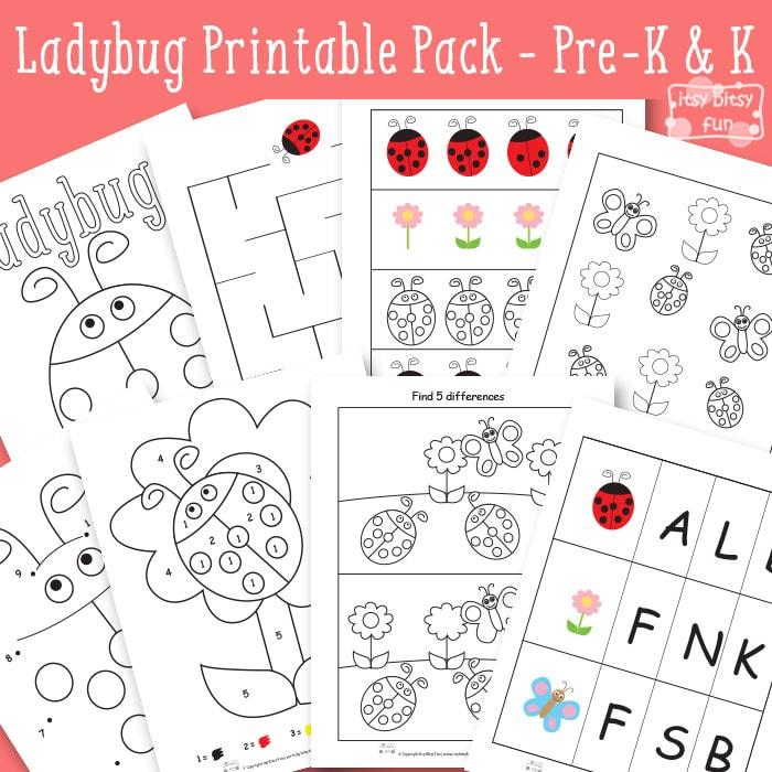 Ladybug Printable Worksheets for Kindergarten and Preschool