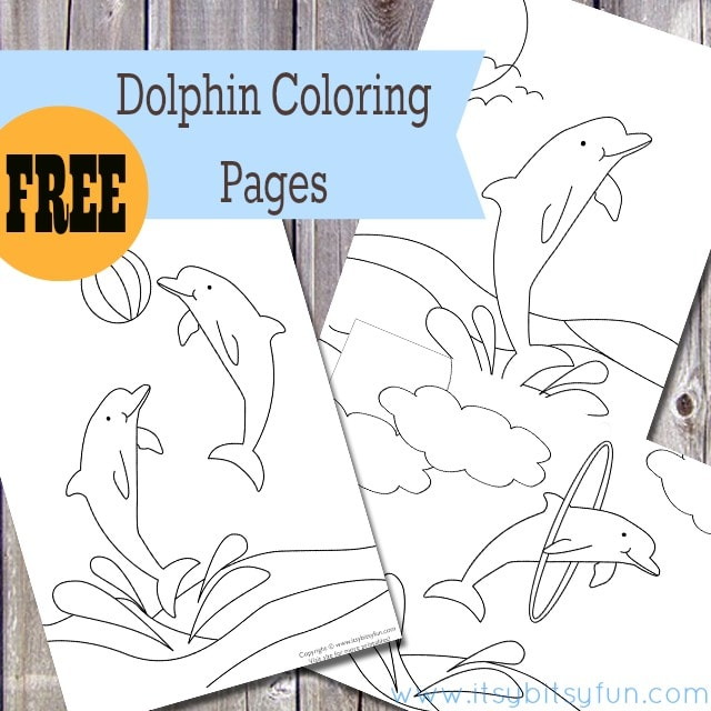 Printable Dolphin Coloring Sheets For Kids