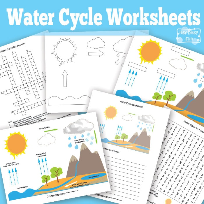 Free Printable Water Cycle Worksheets Diagrams Itsy